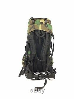 Gregory SPEAR Main Pack US Military Woodland Camo Army Surplus